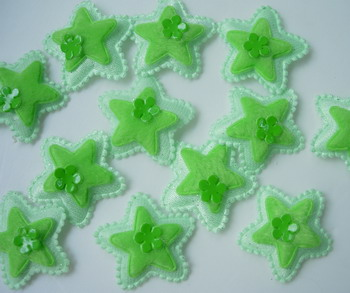 RZ57 Padded Velvet Applique Star Flower Green x24