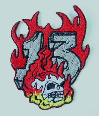 PC91 Skull on Fire Embroidery Patch Applique Iron On Unique